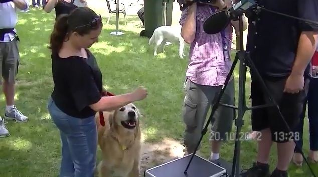 dog_Loudest bark by a dog